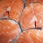 Aquakulturen Fluch oder Segen für die Welternährung?