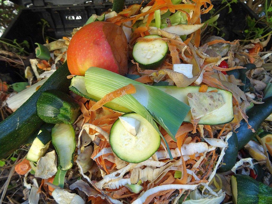 Was darf auf den Komposter und was nicht?