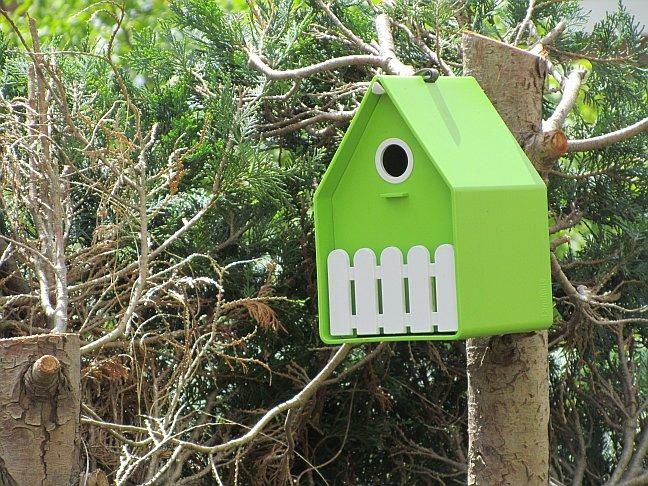 Vogelhäuschen und Nistkästen, nach welcher Himmelsrichtung ausrichten und an welchem Standort platzieren?