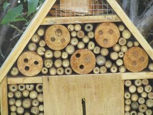 Von Bienen verklebte Bohrlöcher im Bienenhotel