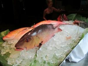 Pescetarier und Fisch und pflanzliche Nahrung als primäre Ernährungsweise