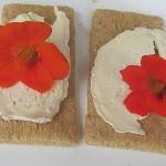 Natamycin E235 ist ein ungesunder Konservierungsstoff der vor allem an Käsesorten wie Raclette oder auch Wurstwaren zu finden ist