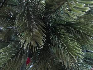 Echter oder künstlicher Weihnachtsbaum