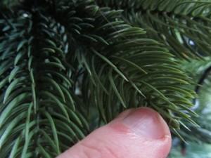 Schadstoffe und Gifte in künstlichen Weihnachtsbäumen bei Berührung