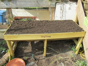 Das Vegtrug Hochbeet frisch befüllt mit Erde und gutem Kompost