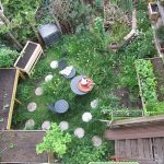 Selbstversorger mit kleinem Garten oder Balkon, wie man auf natürlichem Weg mehr Ertrag auf kleinstem Raum erzeugen kann?