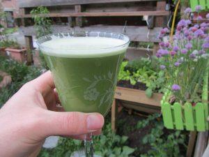 Rezept zum grünen Brennnessel Weizengras Smoothie mit Reismilch und Honig