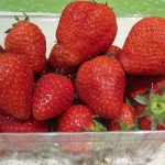 Wie gesund sind Erdbeeren, welche Nährwerte haben sie und warum man besser deutsche Erdbeeren kaufen sollte statt Importe?