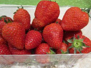 Erdbeeren gesund und mit günstigen Nährwerten, wie stark mit giftigen Pestiziden und anderen Pflanzenschutzmitteln können sie belastet sein