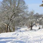 Vitamin D im Winter, warum die Versorgung gerade in den Wintermonaten trotz gesunder Ernährung und häufigem Aufenthalt im Freien bei Tageslicht zu einem Vitamin D Mangel führen kann