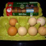 Sind Eier gesund oder ungesund? Was ist dran am Gerücht das Hühnereier angeblich ungesund sind und den Cholesterinspiegel in die Höhe treiben sollen?