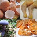 Lebensmittelvergiftungen - Eine ausführliche Übersicht von Fischvergiftung, Salmonellenvergiftung, Pilzvergiftung bis hin zu der klassischen Lebensmittelvergiftung und ihren jeweiligen Symptomen und Ursachen