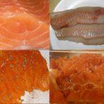 Was ist der Unterschied zwischen Lachs und Seelachs sowie Lachsersatz?